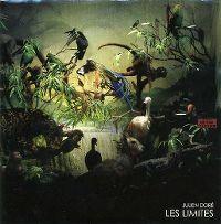 Cover Julien Doré - Les limites