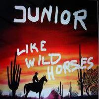 Cover Junior - Like Wild Horses