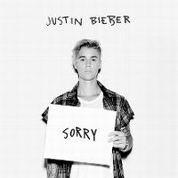 Cover Justin Bieber - Sorry