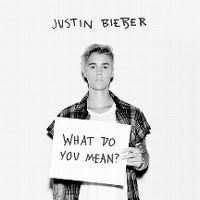 Cover Justin Bieber - What Do You Mean?