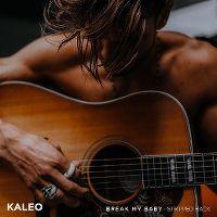 Cover Kaleo - Break My Baby