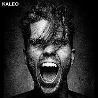 Cover Kaleo - I Want More