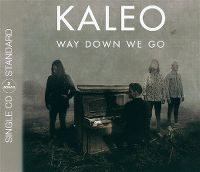 Cover Kaleo - Way Down We Go