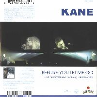 Cover Kane & Ilse DeLange / Kane - Before You Let Me Go / Rain Down On Me (Tiësto Remix)