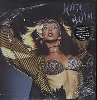 Cover Kate Bush - Sat In Your Lap