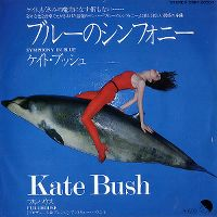 Cover Kate Bush - Symphony In Blue