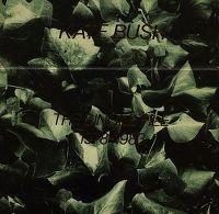 Cover Kate Bush - The Single File 1978-1983