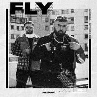 Cover KC Rebell x Summer Cem - Fly