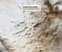 Cover Kings Of Leon - Revelry