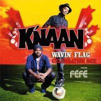 Cover K'naan feat. Féfé - Wavin' Flag