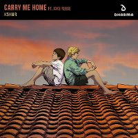 Cover KSHMR feat. Jake Reese - Carry Me Home