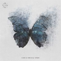 Cover Kygo & Chelsea Cutler - Not Ok