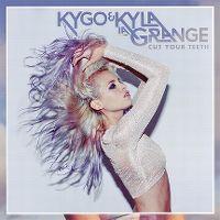 Cover Kygo & Kyla La Grange - Cut Your Teeth
