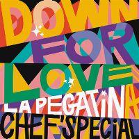 Cover La Pegatina & Chef'Special - Down For Love