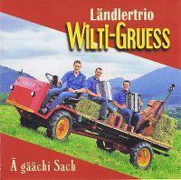Cover Ländlertrio Wilti-Gruess - Ä gäächi Sach