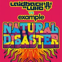 Cover Laidback Luke vs. Example - Natural Disaster