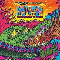 Cover Laidback Luke vs. Example - Natural Disaster