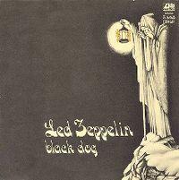 Cover Led Zeppelin - Black Dog