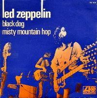 Cover Led Zeppelin - Black Dog