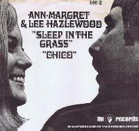 Cover Lee Hazlewood & Ann-Margret - Sleep In The Grass