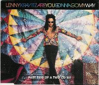 Cover Lenny Kravitz - Are You Gonna Go My Way