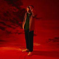 Cover Lewis Capaldi - Bruises