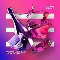 Cover Lil Kleine & Mula B - Ff nieuwe Sannie halen (Vakantie Remix)