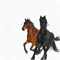 Cover Lil Nas X - Old Town Road