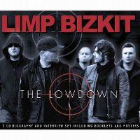Cover Limp Bizkit - The Lowdown