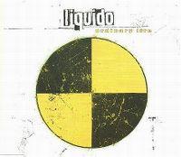 Cover Liquido - Ordinary Life