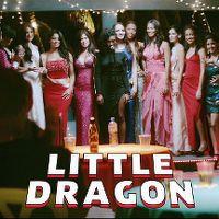 Cover Little Dragon - Pretty Girls