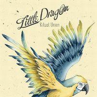 Cover Little Dragon - Ritual Union