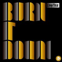 Cover LNY TNZ - Burn It Down