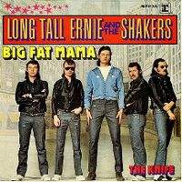 Cover Long Tall Ernie And The Shakers - Big Fat Mama