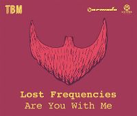 Cover Lost Frequencies - Are You With Me