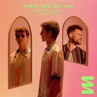 Cover Lost Frequencies / Calum Scott - Where Are You Now