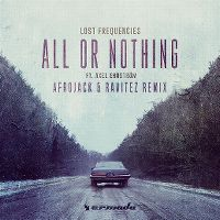 Cover Lost Frequencies feat. Axel Ehnström - All Or Nothing