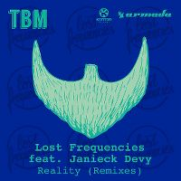Cover Lost Frequencies feat. Janieck Devy - Reality