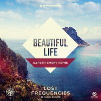 Cover Lost Frequencies feat. Sandro Cavazza - Beautiful Life
