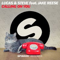 Cover Lucas & Steve feat. Jake Reese - Calling On You