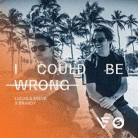 Cover Lucas & Steve x Brandy - I Could Be Wrong