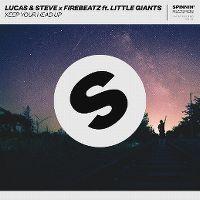 Cover Lucas & Steve x Firebeatz feat. Little Giants - Keep Your Head Up