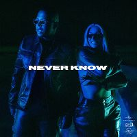 Cover Luciano & Shirin David - Never Know