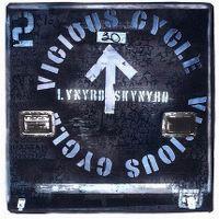 Cover Lynyrd Skynyrd - Vicious Cycle