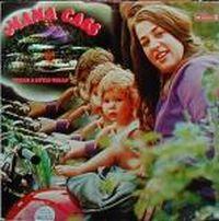 Cover Mama Cass - Dream A Little Dream