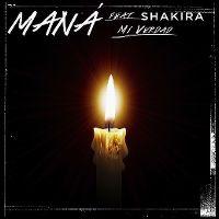 Cover Maná feat. Shakira - Mi verdad