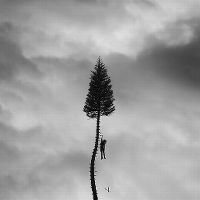 Cover Manchester Orchestra - A Black Mile To The Surface