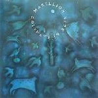 Cover Marillion - Holidays In Eden