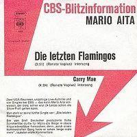 Cover Mario Aita - Die letzten Flamingos