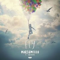 Cover Marshmello feat. Leah Culver - Fly
